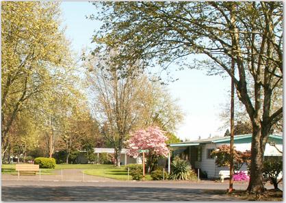 Briarwood Mobile Home Park - Active Bethel Citizens
